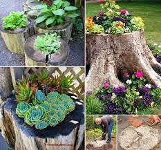 Pictures Of Tree Stump Decorating Ideas Tree Stump Planter Tutorial Usefuldiy Com Reciclaje O
