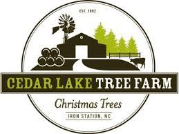 Helms Christmas Tree Farm - cut your own christmas tree farms around lake wylie sc nc