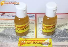 jual minyak bulus asli khasiat minyak bulus kegunaan minyak