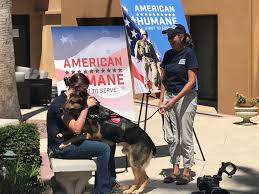 reunited with handler american humane