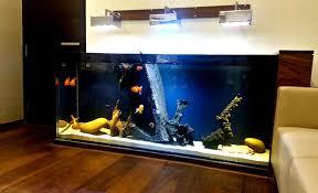 Home Design 3d Gold Review Luxury Goldfish Tank Aquarium Madoverfish Aquariums U0026 Water Arts