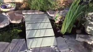 small diy wildlife goldfish pond with biohaven bog 2015 youtube
