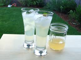 vodka tonic recipe june 2012 boozed infused