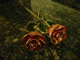 Gold Dipped Roses Anyone Recieve A Gold Dipped Rose Weddingbee
