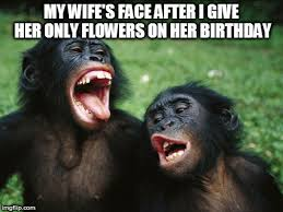 Funny Memes For Her - 100 hilarious funny happy birthday wife meme and quotes