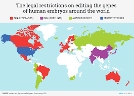 Where Is Holland On The Map What Countries Allow Researchers To Edit Human Embryos Business