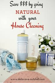 save big by going natural with your house cleaning delia in a