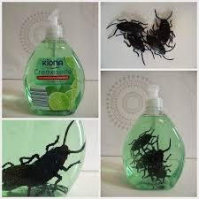 Diy Halloween Decor Diy Halloween Decoration Soap Bathroom Ernestka Halloween If