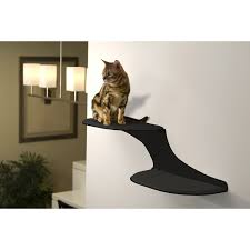 Wall Mounted Cat Perch Decor Best Cat Perch For Your Lovely Cat U2014 Cafe1905 Com