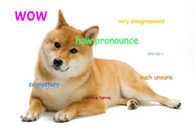 Memes Doge - joke4fun memes doge will rule world very rule much world