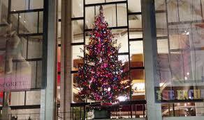 christmas trees in new york beyond rockefeller center