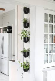 modern kitchen herb garden inspired by charm