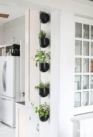 Kitchen Herb Garden Design Modern Kitchen Herb Garden Inspired By Charm