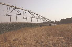 irrigated corn corn irrigation in west tennessee