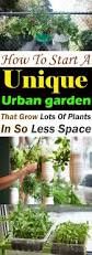 Garden Urban How To Start A Unique Urban Garden To Grow Lots Of Plants In So