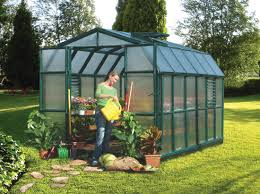 Hobby Greenhouses Rion Prestige 2 Tw 8x12 Greenhouse Hg7312 Free Shipping