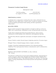 Sample Resume Finance 100 Sample Resume Healthcare Consultant Sample Resumes With