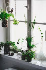window planters indoor tips for creating a mindful home haus window sill and plants