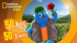 new york feat rapper mc blue the eastern bluebird 50 birds