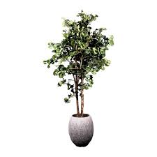 floor plant plant fake trees and plants charm outside artificial plants