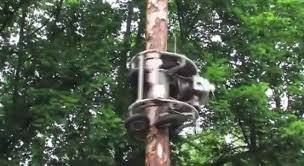 this automatic tree trimmer is brilliant digg