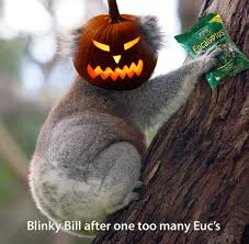halloween is un australian home facebook