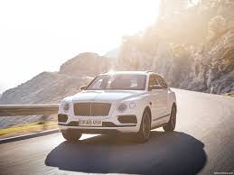 bentley bentayga 2016 bentley bentayga 2016 pictures information u0026 specs