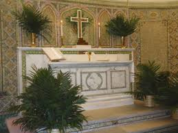 palms for palm sunday purchase think outside the branch ideas for eco palms lutheran world relief