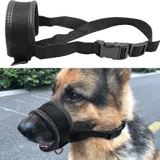 belgian shepherd for sale in pakistan padded nylon dog head collar muzzle no pull for pitbull german