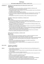 consulting resume exles specialist consultant resume sles velvet
