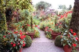 dillons floral dillon garden the dublin 6 review georgina cbell guides