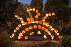 photo contest for those attending glow denver botanic gardens