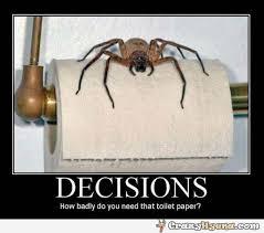 Shower Spider Meme - http crazyhyena com imagebank g deciions toilet paper spider