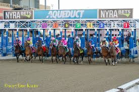 88 best build a better wise looks to build on 16 1 4 length win in thursday s bay