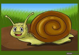 how to draw a cartoon snail step by step cartoon animals