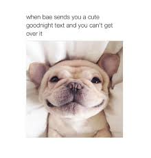 Goodnight Meme Cute - when bae sends you a cute goodnight text and you can t get over it