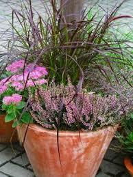 herbstbepflanzung balkon pin by monehr on garten gardens garten and garden ideas