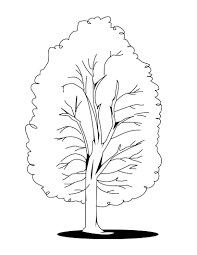 nature apple tree coloring page for kids printable free best of