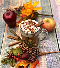 pot cooker copy cat starbucks caramel apple cider