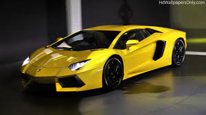 golden lamborghini lamborghini gallardo wallpapers wallpapers browse