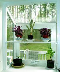 decorative indoor plants indoor plant decorating ideas decorating with plants indoors