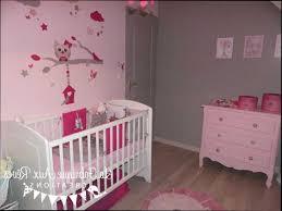 theme chambre bébé fille chambre bébé fille et gris collection et superbe theme chambre