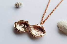 jewelry locket necklace images Rose gold sea shell locket necklace seaside jewellery jpg