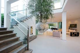 house inside potted tree idea inside la home hanging from the ceiling