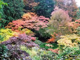Botanical Gardens Seattle Desperately Seeking Ideas