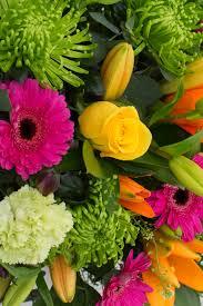 flowers international international mixed cut flowers international flowers