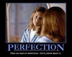 Perfection Girl Meme - perfection meme guy