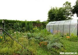 construction d une serre de jardin en bois construire ou acheter sa serre aquaponie france