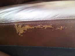 Leather Sofa Scratch Repair Kit Sofa Repair Near Me Leather Kit Walmart Uk For Cat Scratches