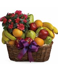 food baskets to send send fruit gourmet gift baskets plaza flowers